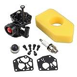 HIPA 795477 Carburetor + 698369 Air Filter for Briggs & Stratton 795469 794147 699660 794161 498811