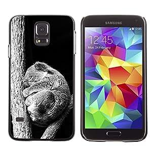 Caucho caso de Shell duro de la cubierta de accesorios de protección BY RAYDREAMMM - Samsung Galaxy S5 - Bebé Sleepy Koala