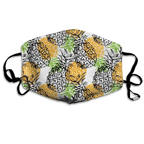 Dust Mask - Anti Dust Pollution Mask - Washable Mouth Mask with Adjustable Straps (Yellow Pineapple)