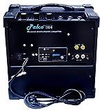 PALCO 104 USB FM GUITAR AMPLIFIER