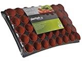 Plantpak Seed And Cutting Tray 40 Pot (16)