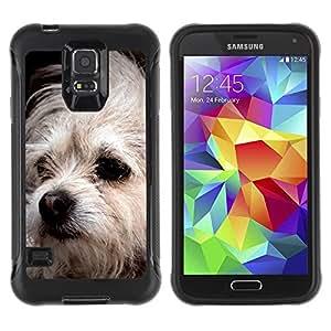 Suave TPU GEL Carcasa Funda Silicona Blando Estuche Caso de protección (para) Samsung Galaxy S5 V / CECELL Phone case / / Bolognese Mutt Dog White Fur Canine /