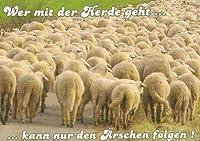 Postkarte - Wer mit der Herde geht kann nur den Ärschen folgen!