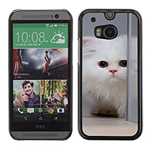 Design for Girls Plastic Cover Case FOR HTC One M8 White Cat Longhair Mirror Big Eyes Cute OBBA