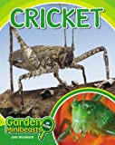 Cricket, John Woodward, 1604139021