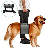 Lepark Dog Sling with Handle for Canine Aid, Veterinarian Approved Dog Lift Harness for Rehabilitation (M,Grey)