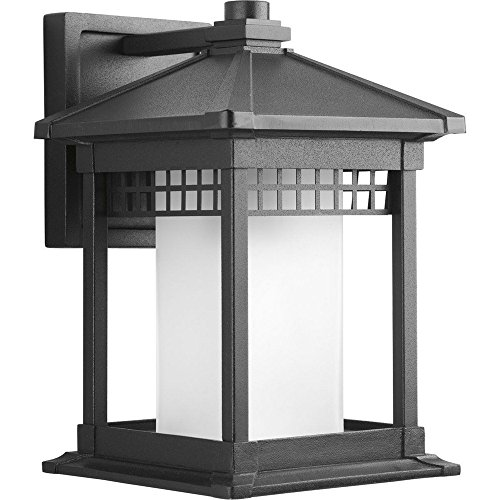 Progress Lighting P6001-31 Merit Collection 1-Light Wall Lantern, Black