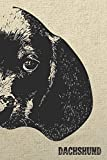 Dachshund Notebook: Stylish Lined Notebook For