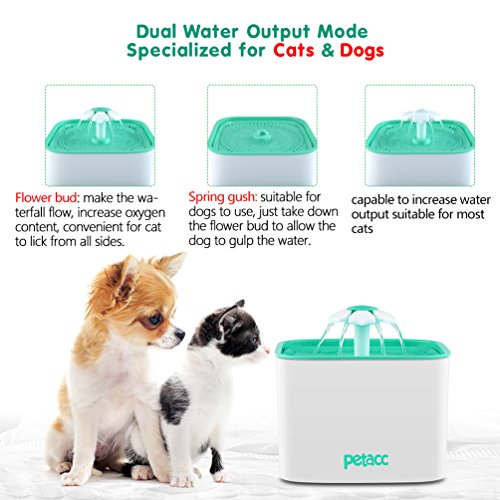 Pet Fountain Cat Dog Water Dispenser with Pump and 4 Replacement Filters - Healthy and Hygienic 2L Super Quiet Automatic Electric Water Bowl, Drinking Fountain for Dogs, Cats, Birds and Small Animals by Petacc (Image #4)
