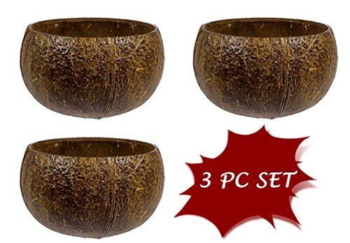 Real Coconut cups/bowls - set of 3 genuine Coconut shell cups or bowls - Coconut Shell Cups