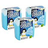 Image of Fit & Fresh Cool Coolers Slim Reusable Ice Packs for Lunch Boxes, Lunch Bags and Coolers, Set of 12, Blue