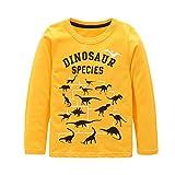 Toddler Boys Cotton Long Sleeve T-Shirts T Rex Dinosaur Shirt Graphic Tees Yellow 3T