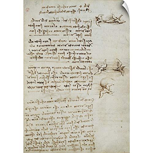 - Leonardo da Vinci Wall Peel Wall Art Print Entitled Codex on The Flight of Birds, by Leonardo da Vinci, 1505-1506. Royal Library, Turin 12