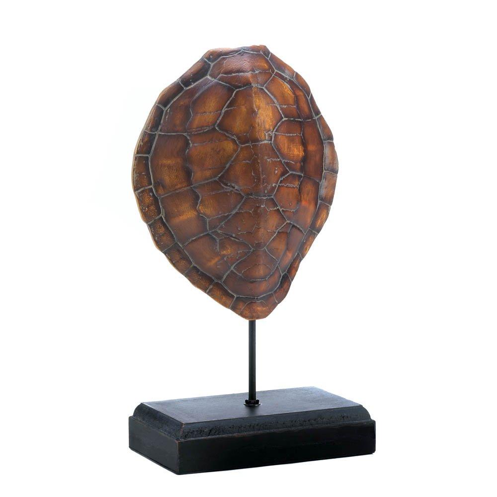 amazon com home decor turtle shell museum decor home u0026 kitchen