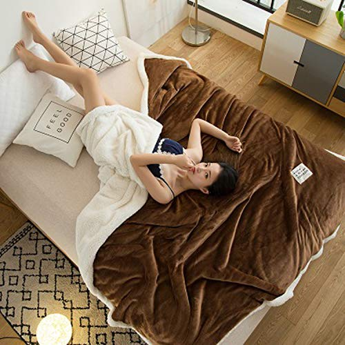 - Christmas Gifts Double-Layer Lamb Blankets for beds Pink Winter Weighted Blanket Fleece Super Soft Throw On Sofa Bed Sheets Blanket,Chocolate,150x200cm