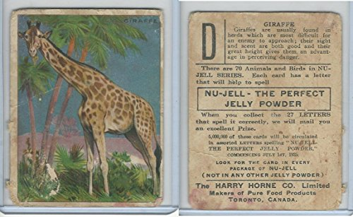 FC1, Harry Horne Co, Nu-Jell, Animals And Birds, 1925, Giraffe