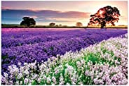 Kanzd Jigsaw Puzzle 1000 Pieces for Adults, Landscape Pattern Adult Children Puzzle Puzzle Educational Toy (B)