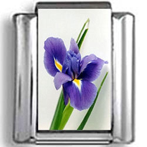 Purple Flower Photo Italian Charm