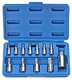 Torx Plus Socket Bit | 12pc Set 6pt Star Lobe Cr-V S2 Steel 1/4'' 3/8'' 1/2'' Drive
