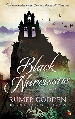 Black Narcissus (VMC) (Narcissus Black)