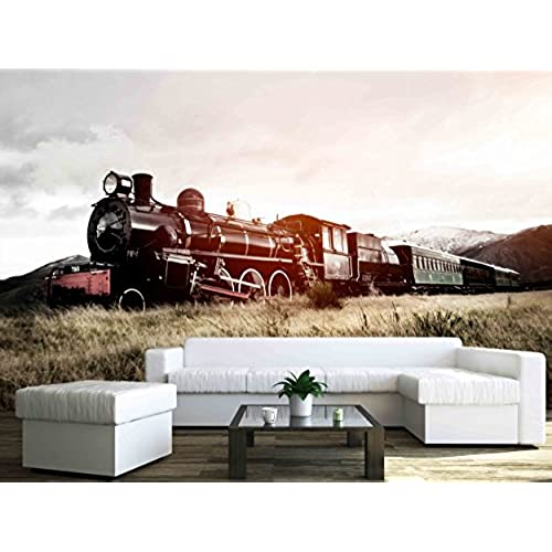 Country Wall Murals Large Amazoncom