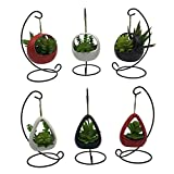 6 PCS Set Cute Coloful Ceramic Succulent Cactus Flower Pot Hanging Planter for Home Garden Office Desktop Decoration (Plants Not Included)