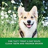 Amazon Brand-Wag Dental Dog Treats to Help Clean