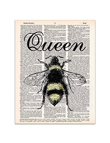 Queen Bee Dictionary Page Art Print, 8x11 UNFRAMED