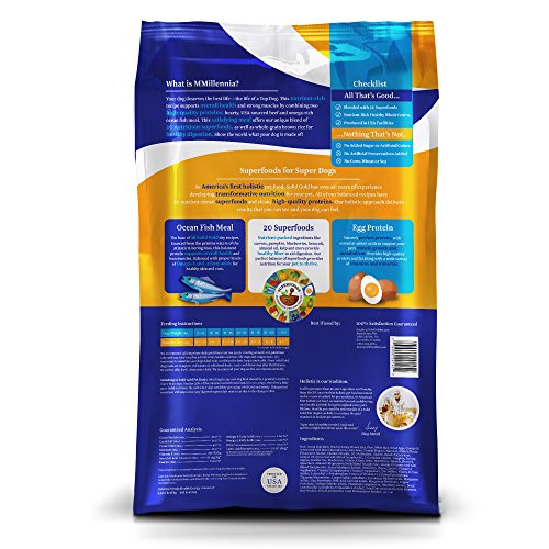 Solid Gold MMillennia Holistic Dry Dog Food, Beef & Brown Rice with Peas, Moderately Active Adult Dogs, All Sizes, 28lb Bag by Solid Gold (Image #1)