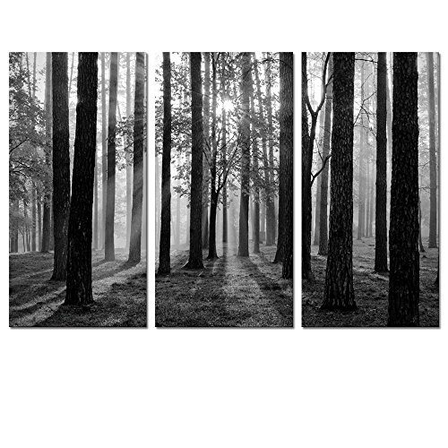 Black and White Landscape Canvas Wall Art,Modern Wall Art,Nature Picture Art,Canvas Prints,Oil Painting,Autumn Forest Wall Decor,Wall Decoration (Foggy - White Pictures Wall And Black