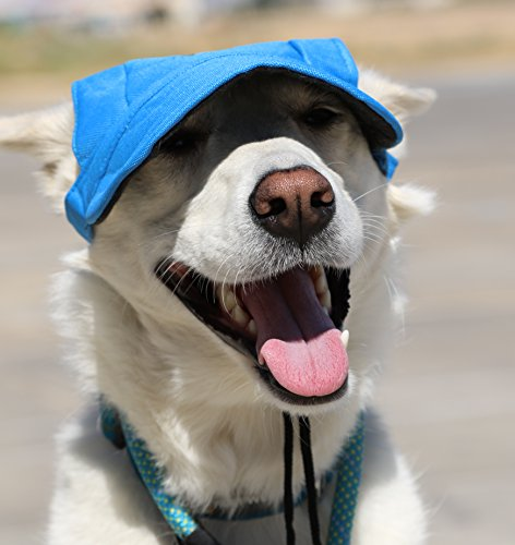 LoveWally Dog Outdoor PET Hat Blue ♦ Adjustable Authentic (Large) by LoveWally (Image #2)