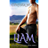 Liam (Destiny in Deadwood Book 2)