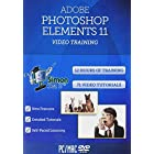Learn Adobe Photoshop Elements 11 Training Tutorials – 12 Hours
