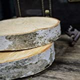 Natural Wood Slices, Round Birch Slabs, 5 to 7 inches, Rustic Tree Bark Slice, Weathered Log Disc, Outdoor Country Barn Wedding Table Centerpiece, (4 Pack)