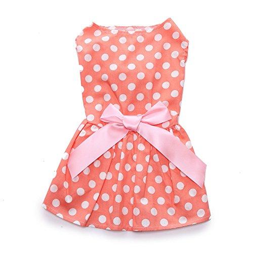 (Pet1997 Pet Orange Loral Dress Spring And Summer Cute Dress Dog Costumes Pet Clothes (Orange,)
