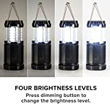 Etekcity 2 Pack Portable LED Camping Lantern Flashlights with 6 AA Batteries - Survival Kit for Emergency, Hurricane, Outage (Black, Collapsible) (upgraded dimmer button)