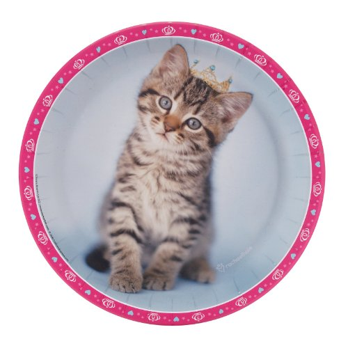 [Rachael Hale Glamour Cats Party Supplies - Dinner Plates (8)] (Hello Kitty Pinata Kit)