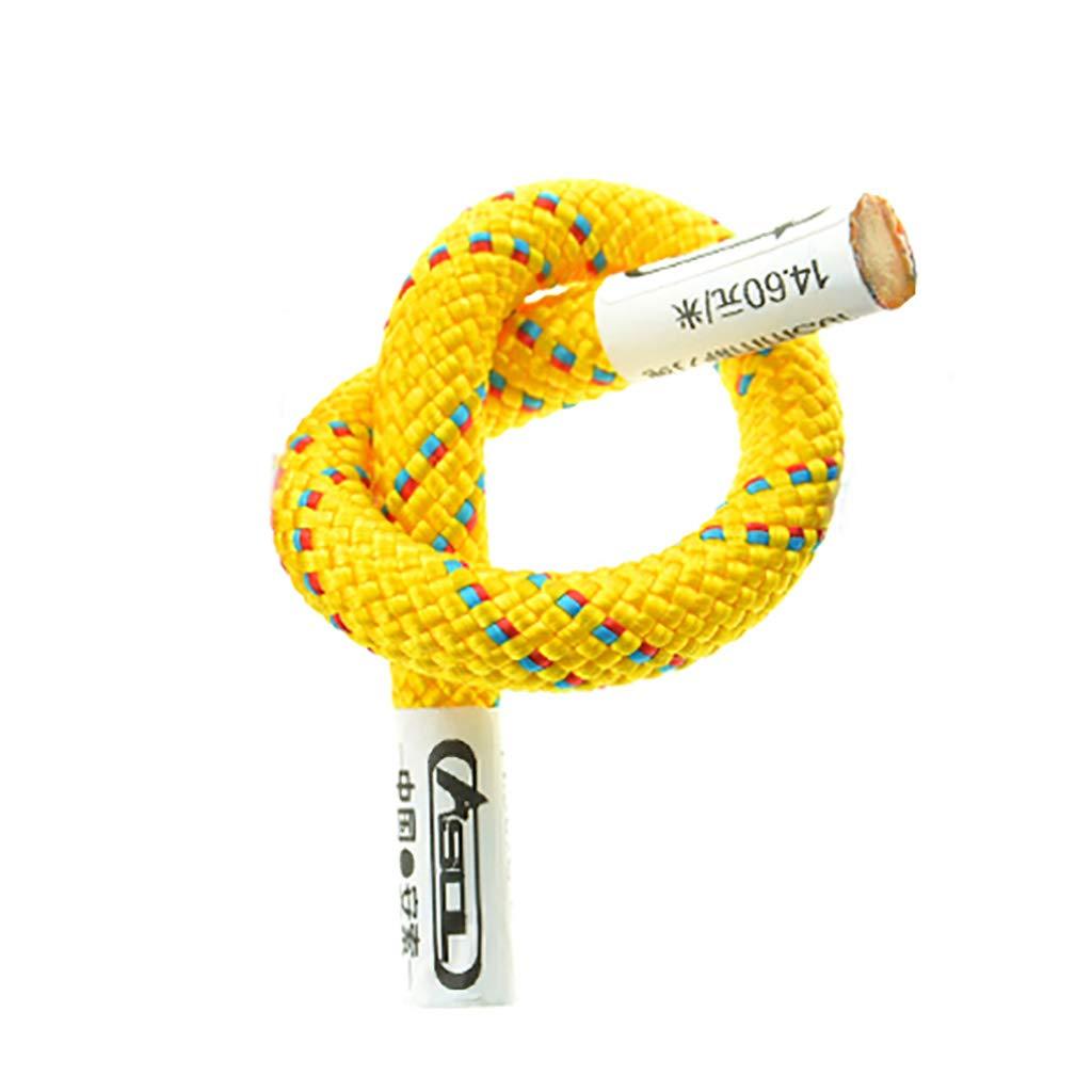 - QARYYQ Corde auxiliaire grimpante auxiliaire en Plein air Fournitures de matériel de Survie en Corde diamètre 6   8mm Cordes (Taille   6mm 20m) 6mm 20m