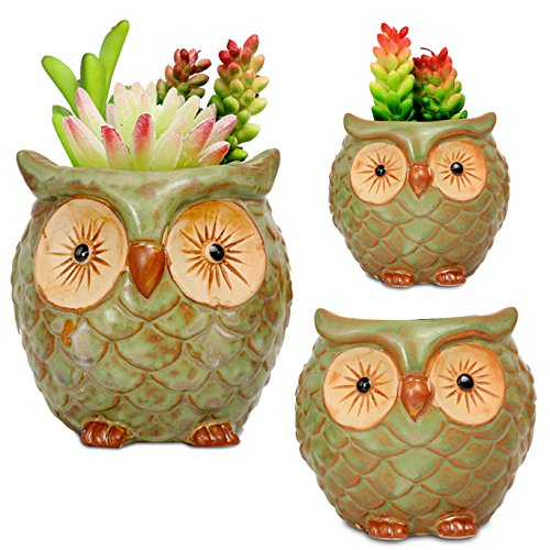 ROSE CREATE 3pcs 3in / 4in / 4.5in Owl Flower Pots by ROSE CREATE