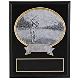 8''x10'' Black Marble Finish Golf Plaque with Resin Action Mount FREE CUSTOM ENGRAVING