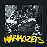 The Weird and Wonderful Marmozets - Marmozets