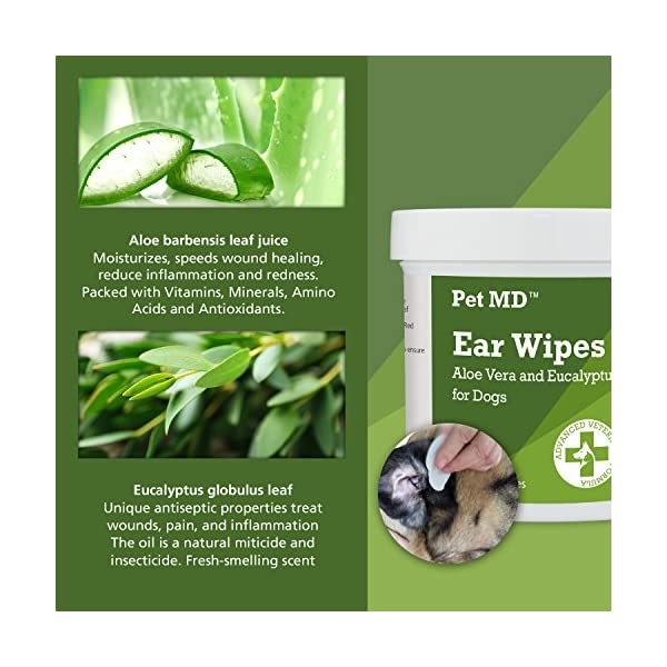 Pet MD - Dog Ear Cleaner Wipes - Otic Cleanser for Dogs to Stop Itching, Yeast and Mites with Aloe and Eucalyptus - 100 Count 3