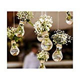 Kwan 4pc Hanging Light Bulb Funny Planters Plastic Flower Air Plant Container Terrarium Indoor Outdoor