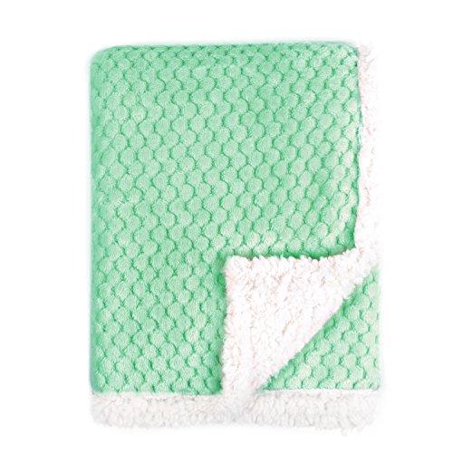 Tadpoles Popcorn Sherpa Ultra Soft Blanket product image