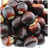 Gresorth 50 PCS Artificial Chestnut Fake Nuts Lifelike Model Home Kitchen Decoration