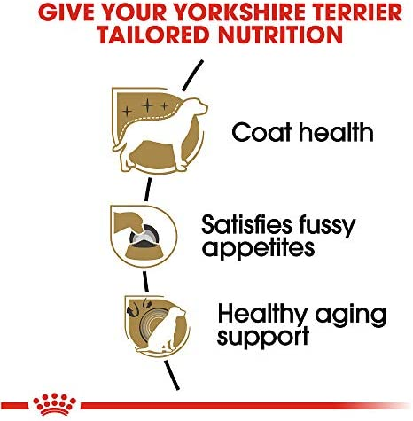 Royal Canin Breed Health Nutrition Yorkshire Standart standart 3
