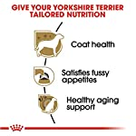Royal-Canin-Yorkshire-Terrier-Adult-Breed-Specific-Dry-Dog-Food-10-lb-bag