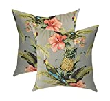 Set of 2 - Indoor / Outdoor Square Decorative Throw / Toss Pillows - Tommy Bahama Home Fabric - Grey / Gray Beach Bounty Tangelo - Tropical Bird, Pineapple, Floral (22'')