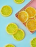 Hagao Fake Lemon Slice Artificial Fruit Highly