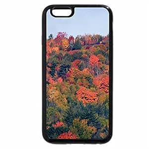 iPhone 6S / iPhone 6 Case (Black) Treetops Of Autumn